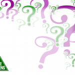 http://thegenerator.com.au/wordpress/wp-content/uploads/2013/02/Trivia-back.png