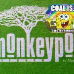 http://thegenerator.com.au/wordpress/wp-content/uploads/2015/12/monkeypod.png